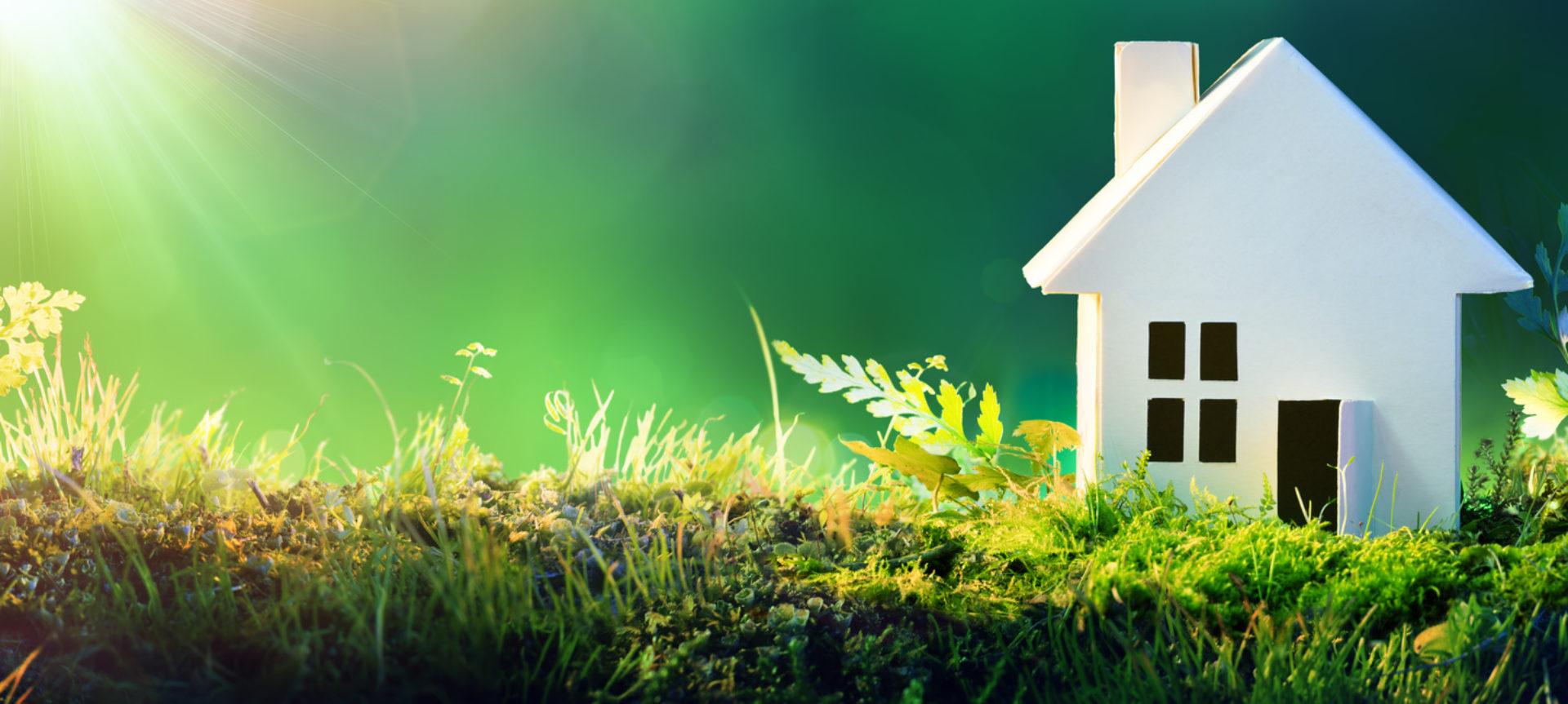 Home Energy Rx